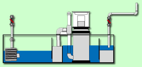 marine concept spezialprodukte f r meerwasseraquaristik. Black Bedroom Furniture Sets. Home Design Ideas